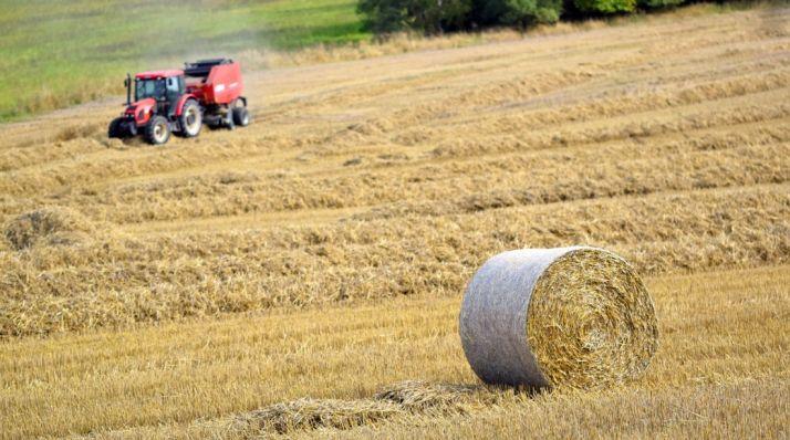 Foto 1 - La Junta anticipa en dos meses 850 millones las ayuda de la PAC a 63.748 agricultores y ganaderos