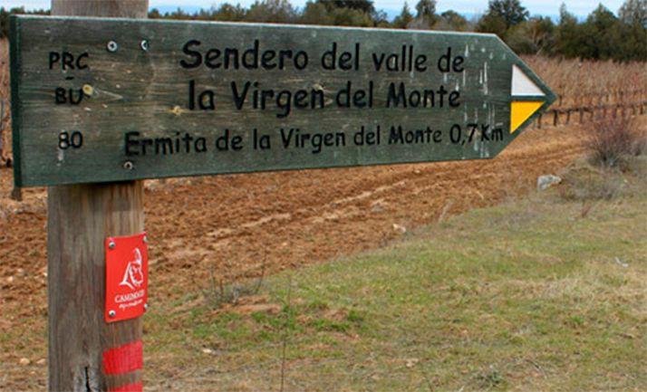 Una señal del itinerario cididano a su paso por Castillejo de Robledo. /CCC