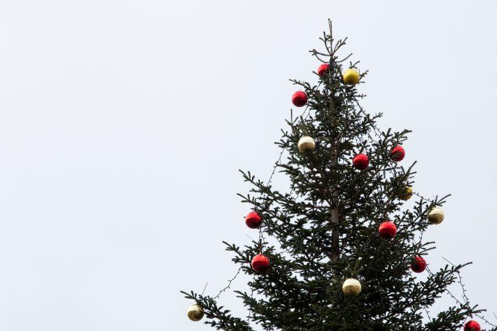 Foto 1 - Navidad lejos de Castilla y León