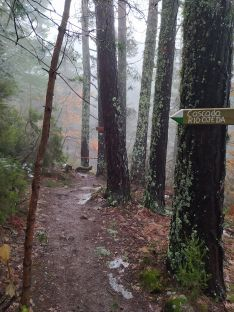 Foto 5 - La ruta de las Tres Cascadas en Covaleda: para no perdérselo