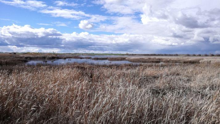 Laguna de la Nava.