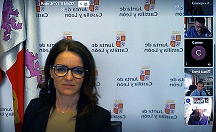 Carlota Amigo, durante la videoconferencia mantenida este jueves. /Jta.