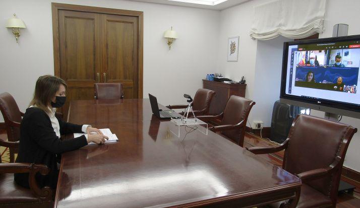La consejera, Rocío Lucas, durante la video conferencia celebrada hoy martes. /Jta.