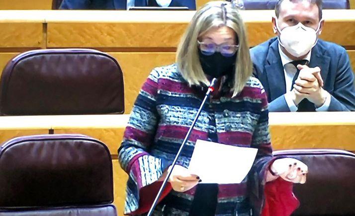 Heredia, durante su intervención parlamentaria.