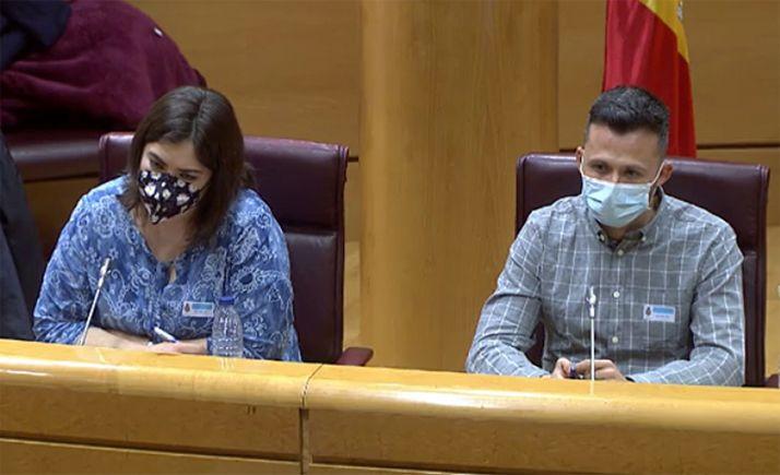 María José Pérez y Juan José Álvarez en su comparecencia en la Cámara Alta hoy. /JCyL