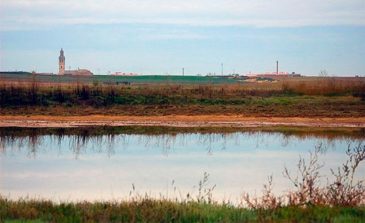 Laguna de Fuentes de Nava (Palencia), uno de los humedales más representativos de CyL.