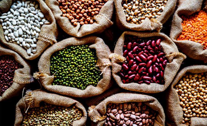 Foto 1 - El Itacyl continúa apostando por la investigación sobre leguminosas por sus beneficios tanto a nivel nutricional como en la agricultura