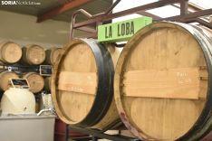Bodega La Loba en Matanza de Soria.