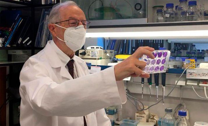 El virólogo Luis Enjuanes, en el Centro Nacional de Biotecnología del CSIC. / CNB-CSIC Comunicación