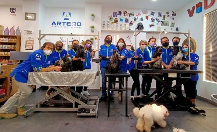 Foto 1 - Master class a nivel nacional de peluquería canina
