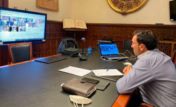 Lozano, durante la reunión telemática mantenida este jueves. /Dip.