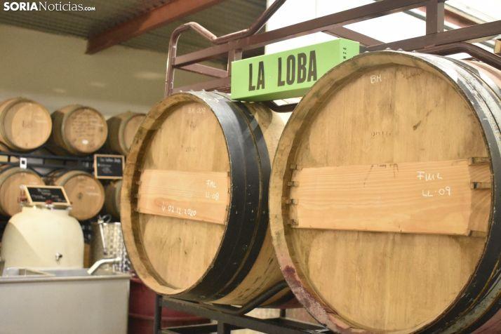 El 5G llega a Soria para elevar el sector del vino y conectar el mundo rural