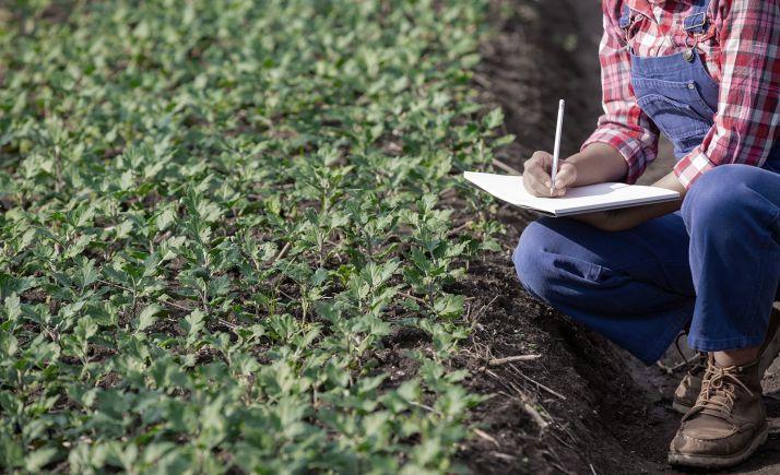 Foto 1 - La Junta incrementa hasta los 2,5 M€ la ayuda para mejorar la formación de los sectores agrario, forestal y agroalimentario