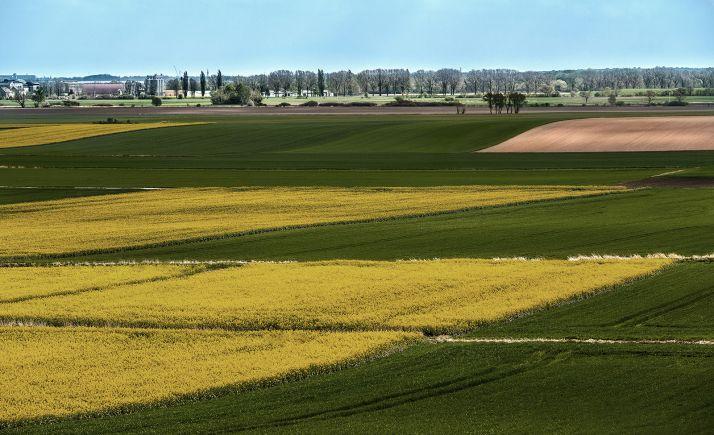 Foto 1 - ASAJA Soria valora la reducción de módulos fiscales para el campo provincial