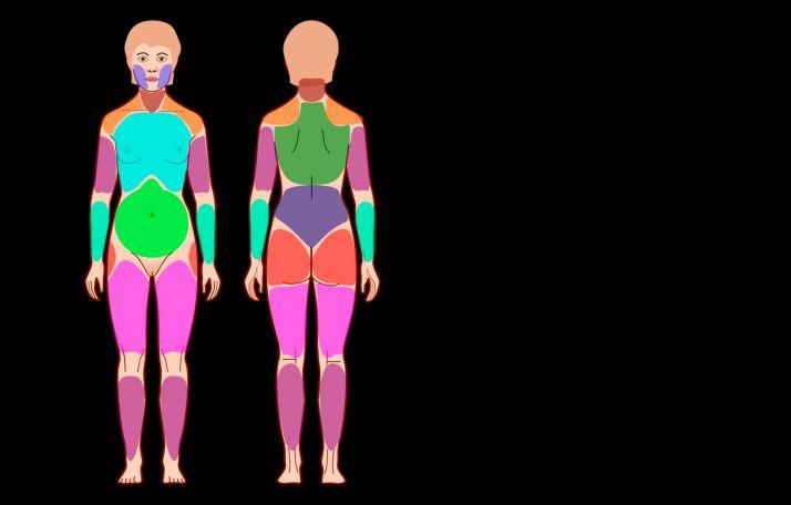 Foto 1 - Investigadores de la UVa implementan un novedoso programa de telerehabilitación para mujeres con fibromialgia