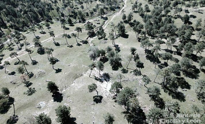 Imagen aérea de la zona donde se ha llevado a cabo el rescate. /Jta.