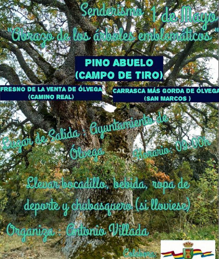 Foto 2 - Este sábado, senderismo 'arbóreo' en Ólvega