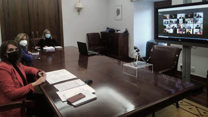 Una imagen del pleno del Consejo de Universidades. /Jta.