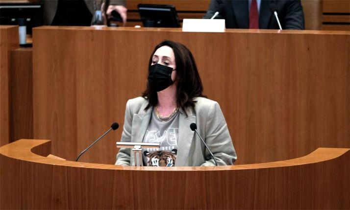 La portavoz socialista durante su intervención.