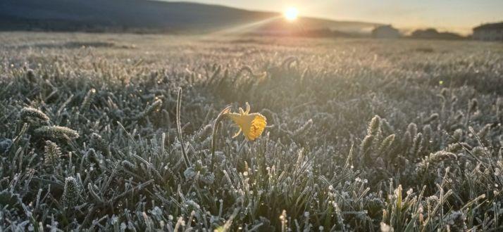 Foto 2 - Duruelo de la Sierra ha registrado esta mañana la temperatura más baja del país