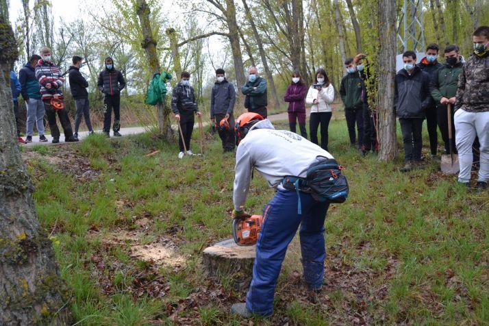 Foto 2 - Técnicas de gestión selvícola con hongos en el Parque de la Arboleda de Almazán