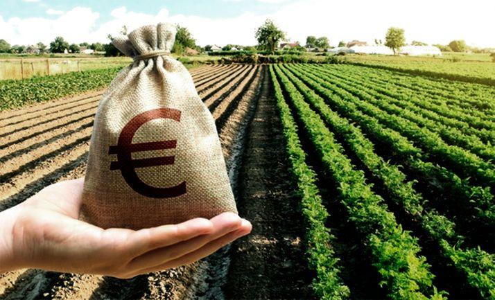 Foto 1 - Convocadas las ayudas agrarias para la bonificación de intereses de los préstamos preferenciales