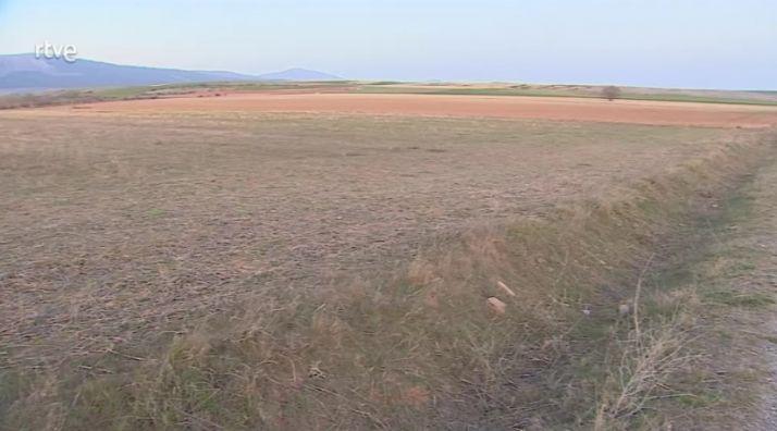 Terrenos previstos para la ubicación de la granja de vacas de leche proyectada en Noviercas. /TVE