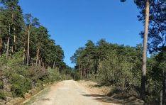 Comienzan los trabajos en la pista de acceso a Castroviejo.