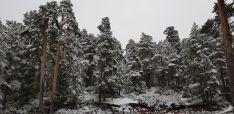 Imágenes de Urbión nevado esta mañana. Agustín Sandoval.