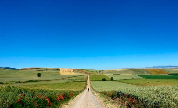 Foto 1 - El Programa de Desarrollo Rural de Castilla y León seguirá en vigor hasta finalizar 2025 y contará con 364M€ más de financiación europea