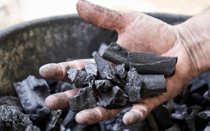 Foto 1 - La Audiencia de León condena a 4 años de cárcel a un empresario minero por los daños al medio ambiente