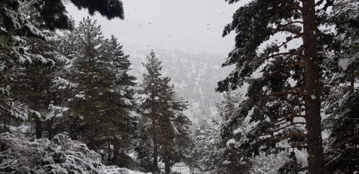 Nieva en el entorno de Urbión. /Agustín Sandoval