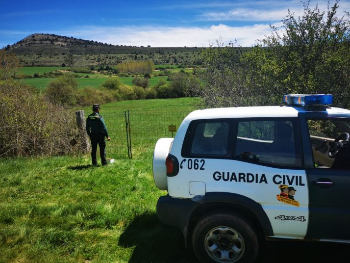 Foto 1 - Detenidas dos personas en Soria por entrar a una finca a robar setas