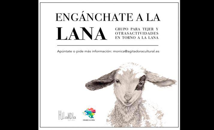 Foto 1 - El miércoles, primera reunión del grupo de la lana auspiciado por Creando por Soria
