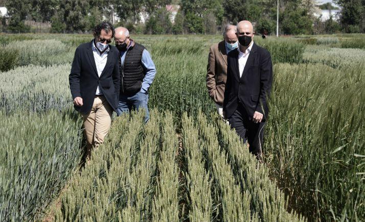 Presentación, junto a Anove, de los resultados de ensayos agrarios. /Jta.