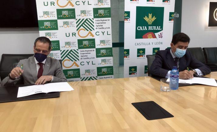 Foto 2 - Rubricado el acuerdo entre la agrupación de Caja Rural y las cooperativas agroalimentarias