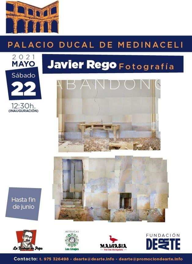 Foto 1 - Javier Rego inundará de arte el Palacio de Medinaceli