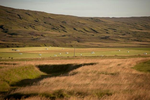 La superficie total declarada de PAC en Castilla y León se mantiene en 5,2 millones de hectáreas
