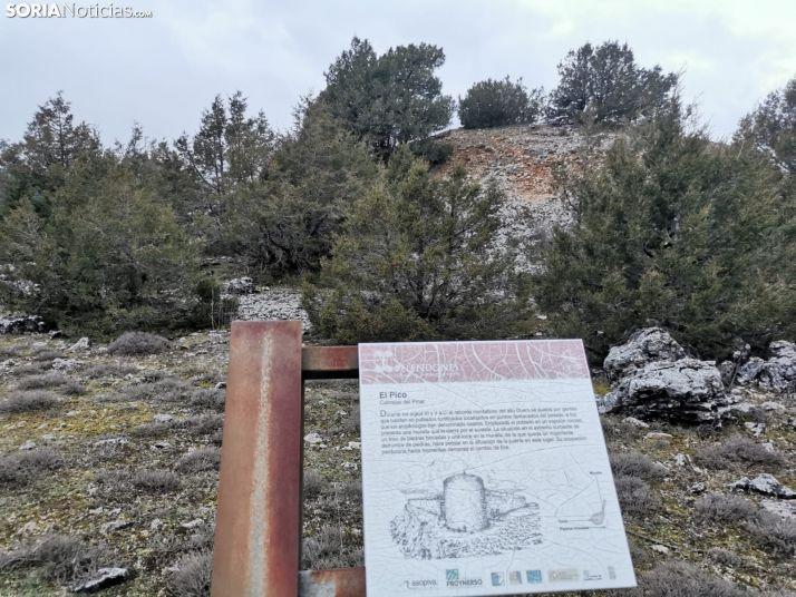 El Pico, asentamiento de un castro celtíbero en Cabrejas del Pinar.