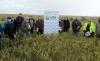 Una imagen de la visita a los cultivos. /UPA-Soria