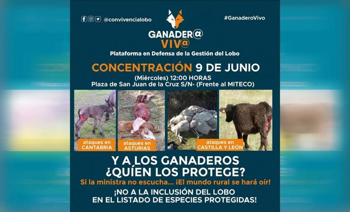 Foto 1 - ASAJA Soria acudirá a la concentración del 9 de junio en Madrid en defensa de la ganadería
