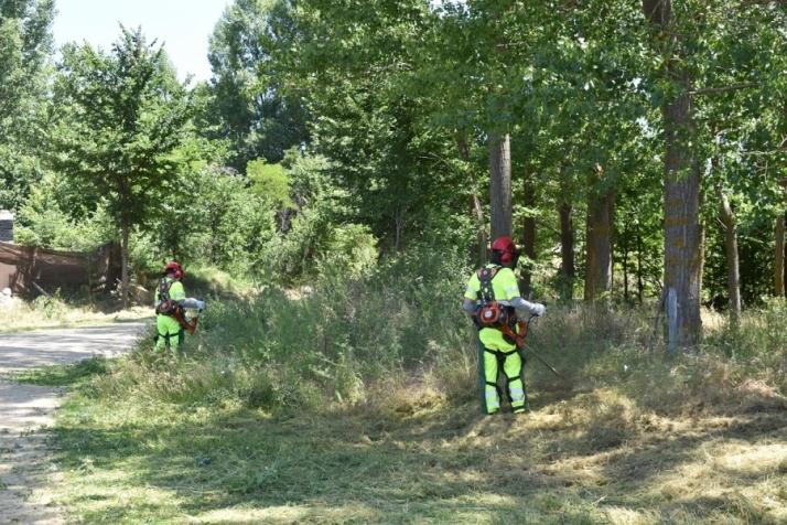 Brigadas forestales en una imagen de archivo.
