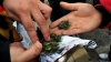 Foto 1 - ¿Alcohol, cannabis, cocaína? Este es el perfil del adicto en Soria