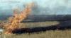 Foto 1 - La Junta declara alerta de riesgo de incendios forestales por causas meteorológicas del 21 al 23 de julio en toda la región