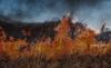 Foto 1 - Continúa la alerta por riesgo de incendios forestales