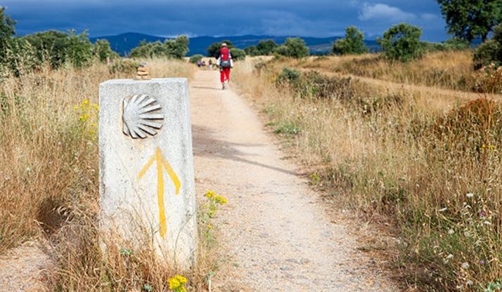 Ólvega celebra el Día de Santiago con una interesante ruta
