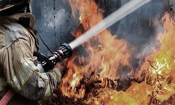Foto 1 - Almazán sufre el primer fuego forestal de la campaña en la provincia