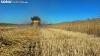 Foto 1 - Radiografía de la cosecha de cereal de 2021 en Soria