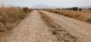Un camino rural soriano.