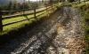Foto 1 - La Diputación abre las ayudas para la conservación de caminos municipales